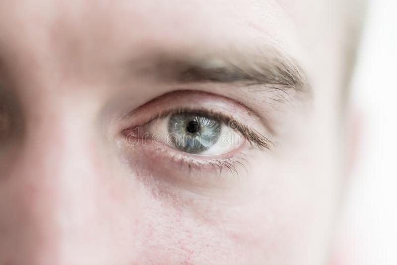 Human eye is very close royalty free stock image