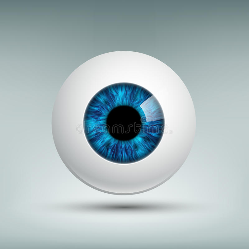 Human eyeball. Stock illustration. royalty free illustration