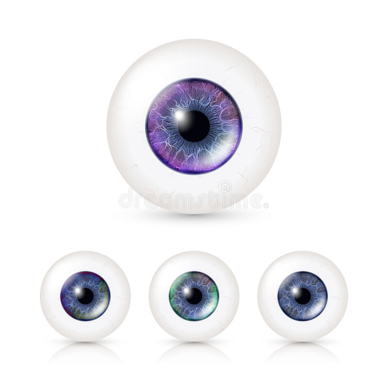 Human Eyeballs Set With Big Irises In Colour. Vector Illustration Of 3d Glossy Detailed Eye With Shadow And Reflection royalty free illustration