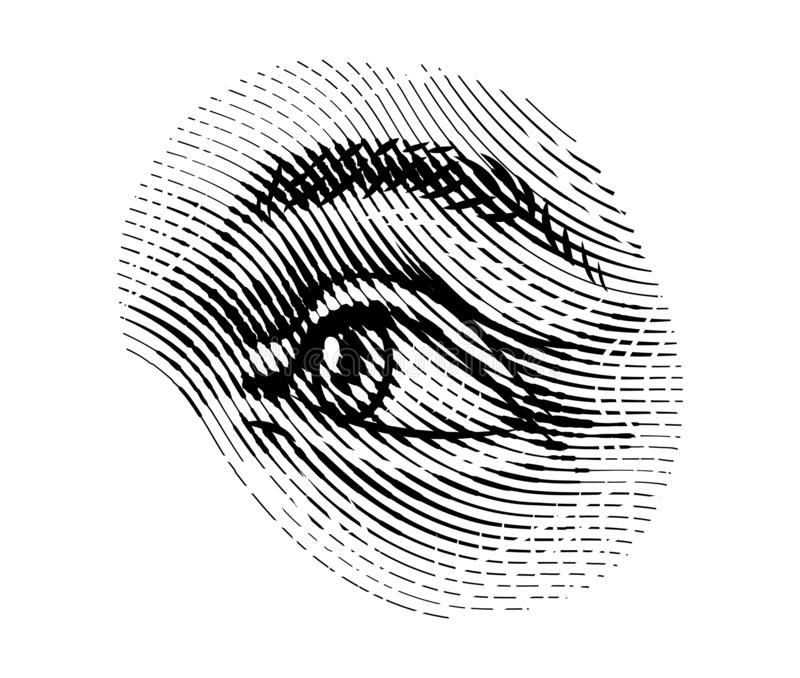 Human eyes eye looks away in vintage style. Female look and eyebrows. Visual System, Sensory Organ Components. Healthy stock illustration