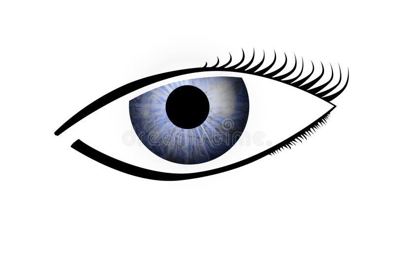 human för blått öga arkivbilder