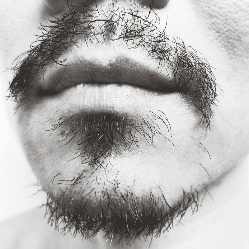 Human face with mustache and beard royalty free stock photography