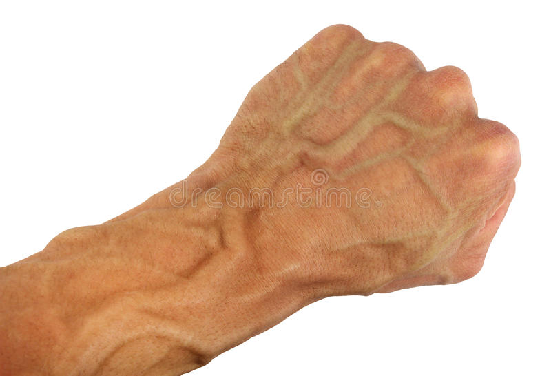 Human fist and wrist with swollen vein, isolated. Human fist and wrist with swollen veins, diagonal location, isolated royalty free stock images