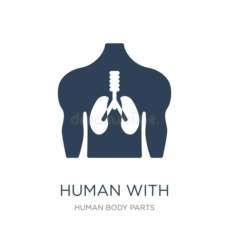 human with focus on the lungs icon in trendy design style. human with focus on the lungs icon isolated on white background. human royalty free illustration