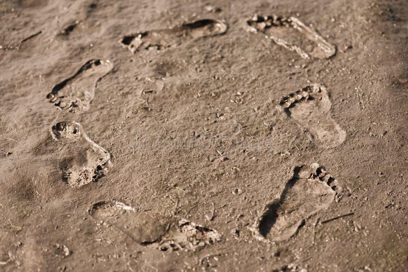 Download Human footsteps stock image. Image of scene, natural - 25057039