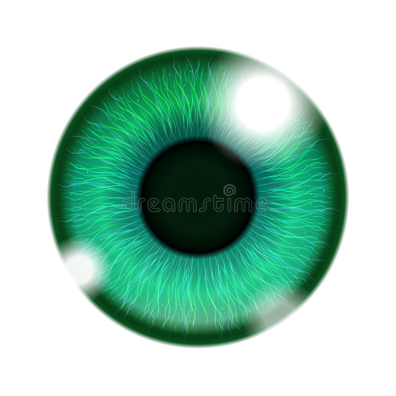 Human Green Eye royalty free illustration