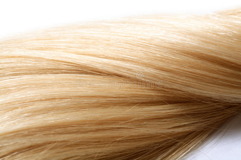 Human hair. Long blond human hair. hair color swatch stock photography