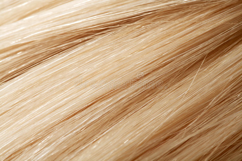 Human hair. Long blond human hair. hair color swatch royalty free stock images