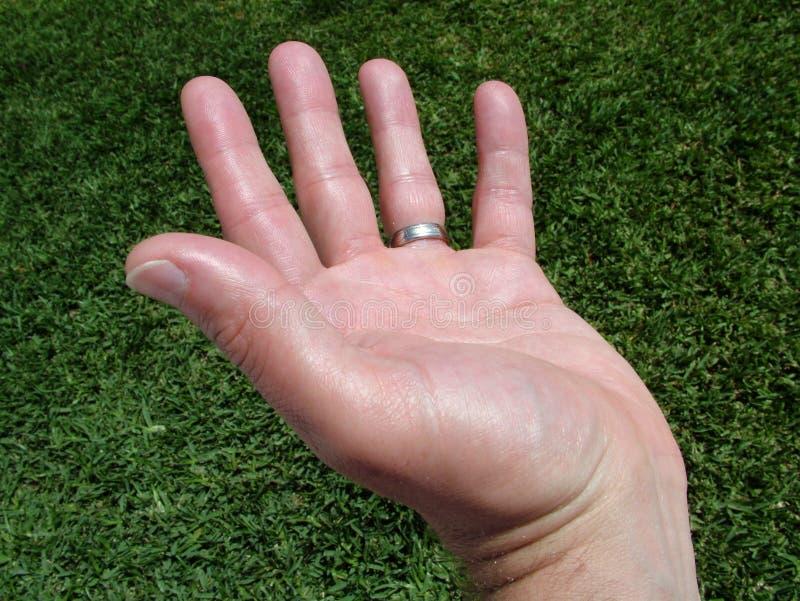 Human Hand Royalty Free Stock Photo