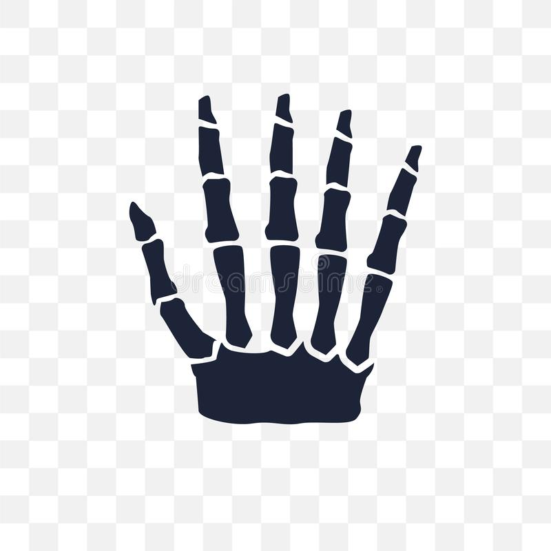 Human hand bones transparent icon. Human hand bones symbol design from Human Body Parts collection. Simple element vector vector illustration
