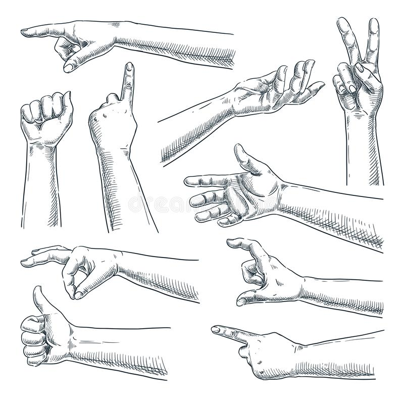 Human hand gesture. Vector sketch hand drawn illustration. Male or female hands collection, isolated on white background vector illustration