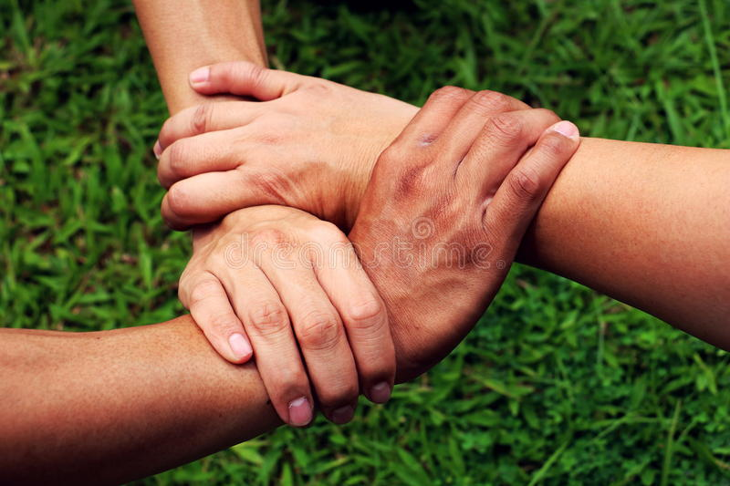 Human hand.hand catch stable. Human hand. People& x27;s hands together stock images