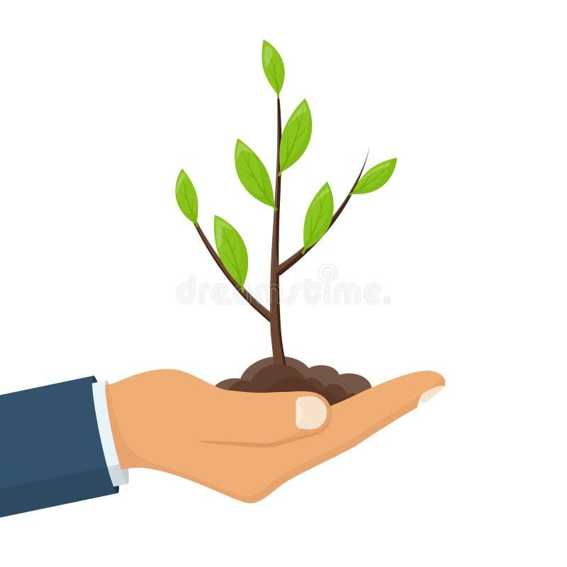 Human hand hold green small tree vector illustration