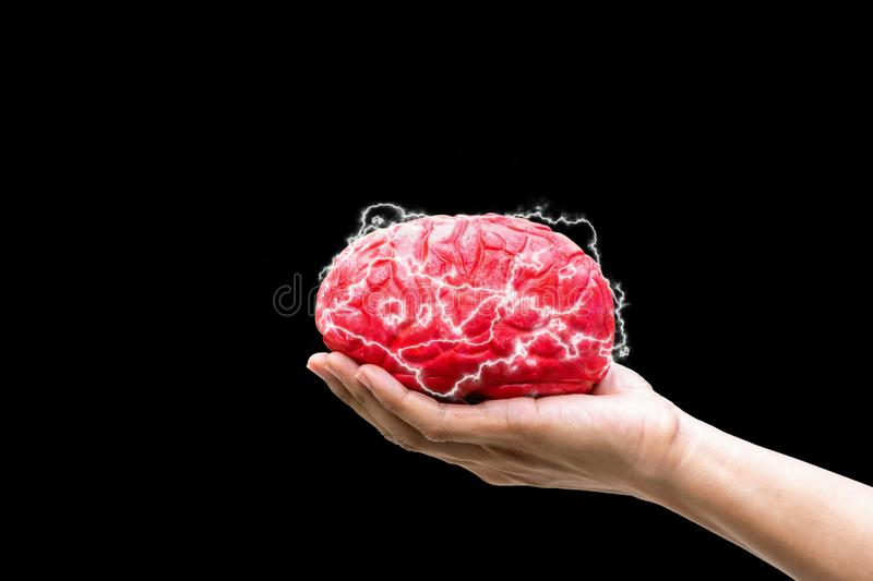 Human hand holding the Command Concept brain in memory stock images