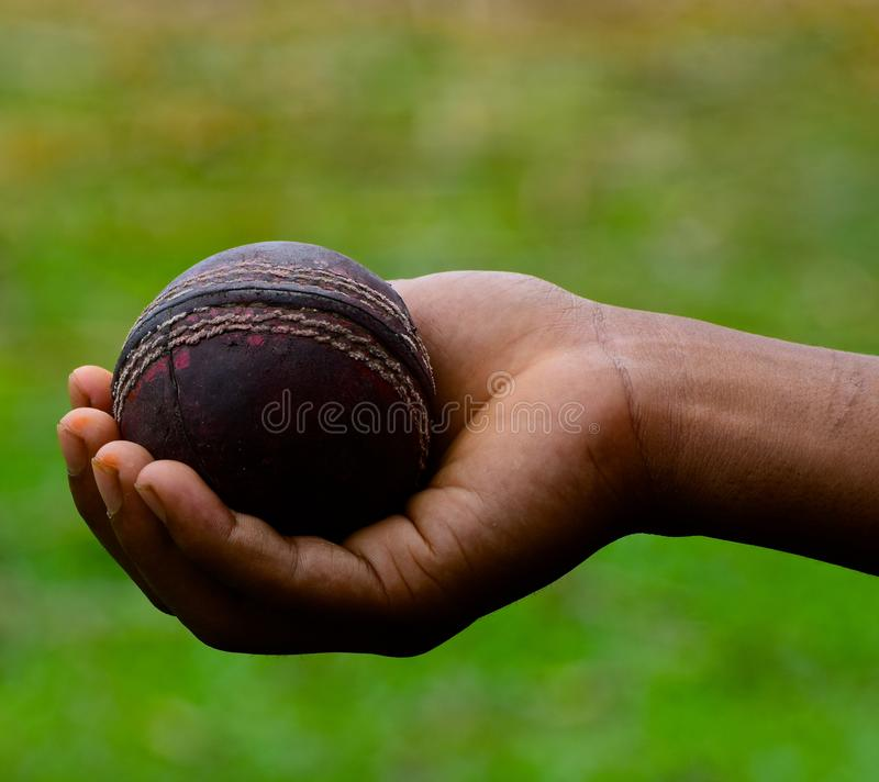 Human Hand Holding a Cricket Ball with Green Background Photograph. A human hand holding a old cricket ball with green background unique stock image royalty free stock photos