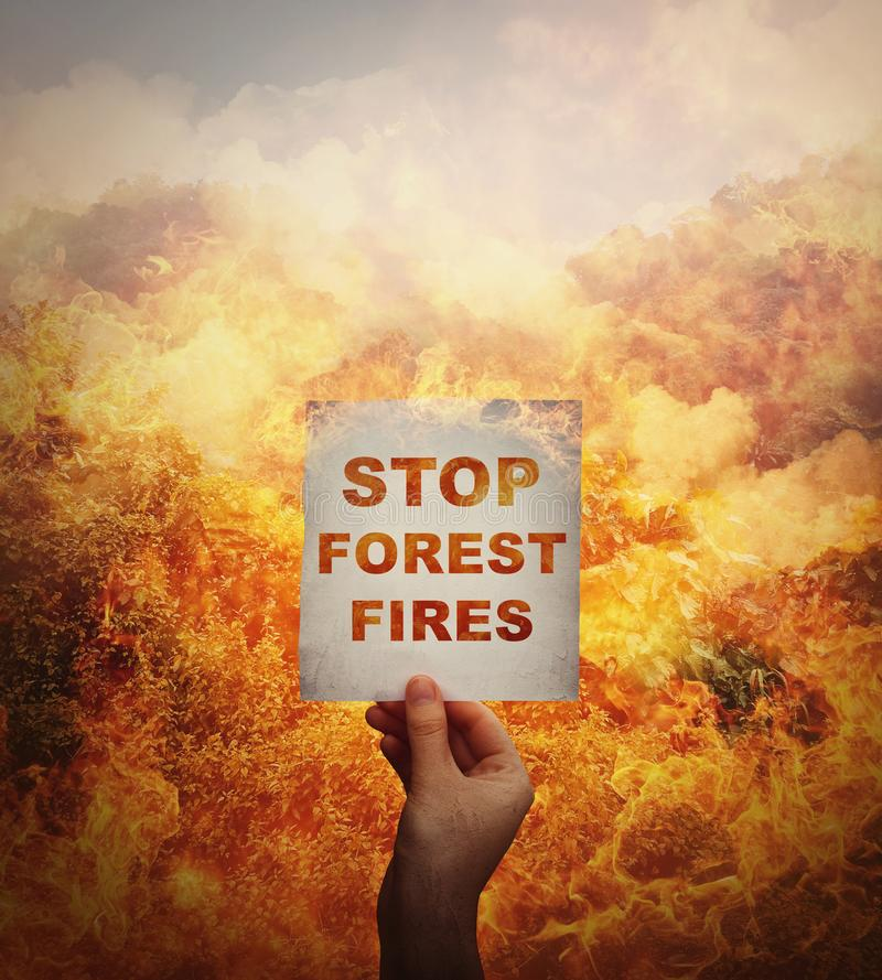 Human hand holding a paper sheet with stop forest fires message in the middle of a wildfire disaster. Global environment danger,. Amazon rainforest burning royalty free stock photos