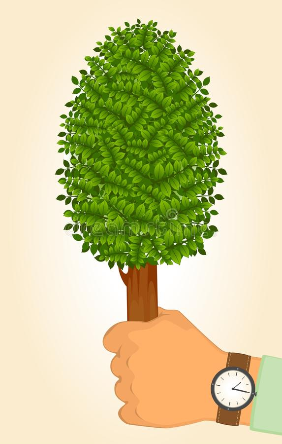 Download Human Hand Holds Protect Tree Stock Vector - Image: 19504036