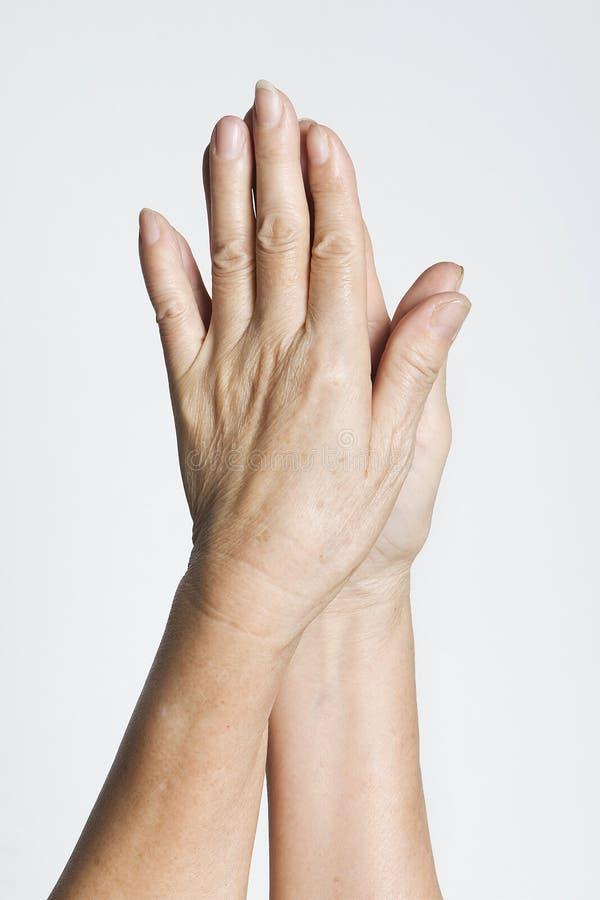 Human Hands stock photos