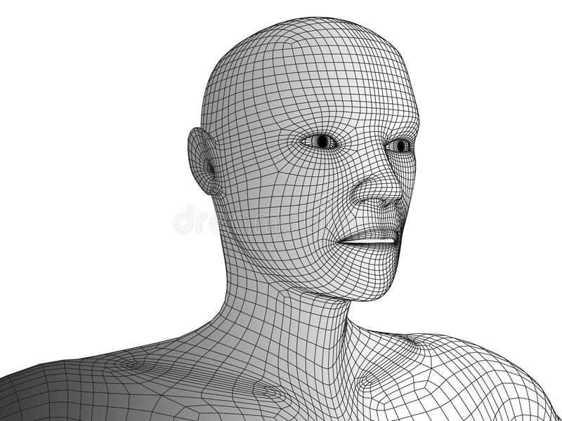 Human Head 3d Wireframe Vector Isolated. Stock Vector - Illustration ...