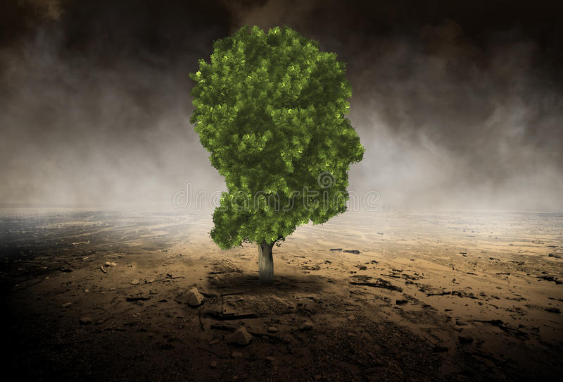 Human Head Tree, Environment, Evironmentalist. Abstract environment concept. A tree in the shape of a human head stands above a surreal desolate desert. Nice royalty free stock images