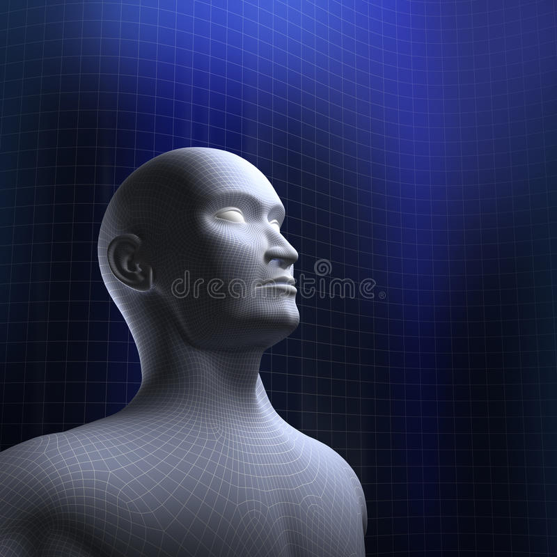 Download Human head wire mode stock illustration. Image of face - 27698079