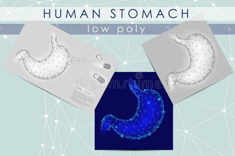 Human healthy stomach. Internal digestion organ. Low poly connected dots triangle future technology design background. Vector medicine illustration art vector illustration