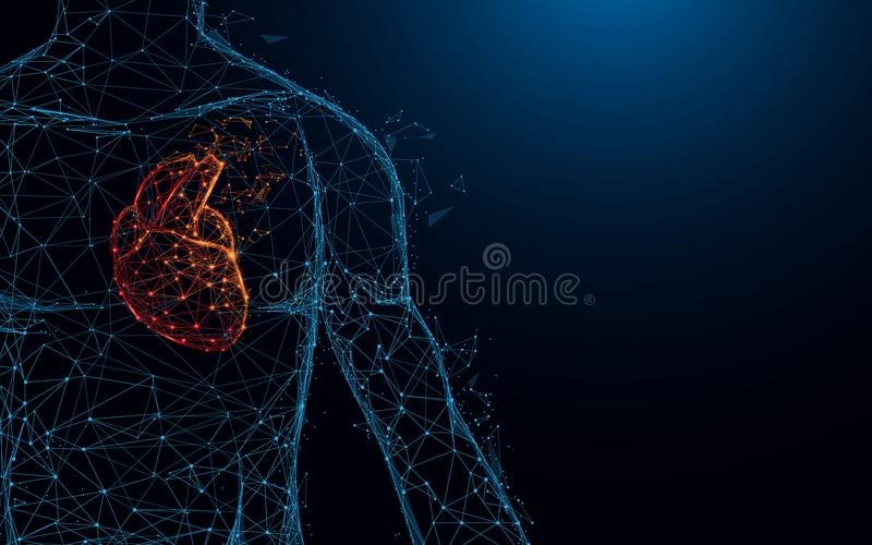 Human heart anatomy form lines and triangles, point connecting network on blue background. vector illustration