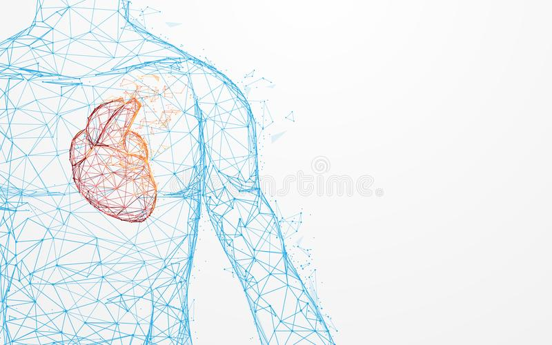 Human heart anatomy form lines and triangles, point connecting network on blue background royalty free illustration