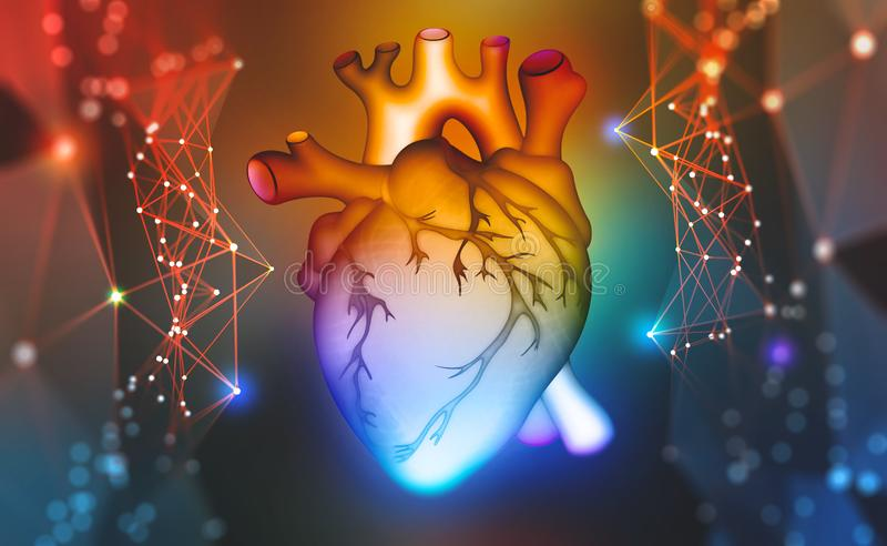 Human heart. Digital technologies in medicine and scientific research of the body. 3D modeling in the field of transplantology of internal organs. Colorful 3d vector illustration