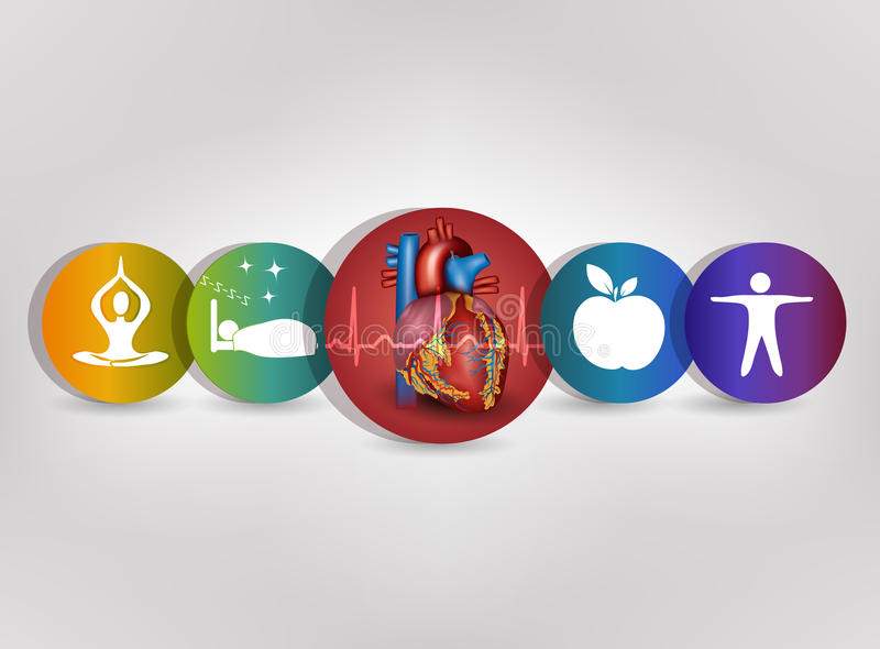 Human heart health care colorful icon collection royalty free illustration