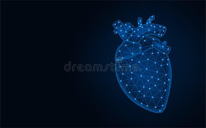 Human Heart Stock Illustrations 88484 Human Heart Stock