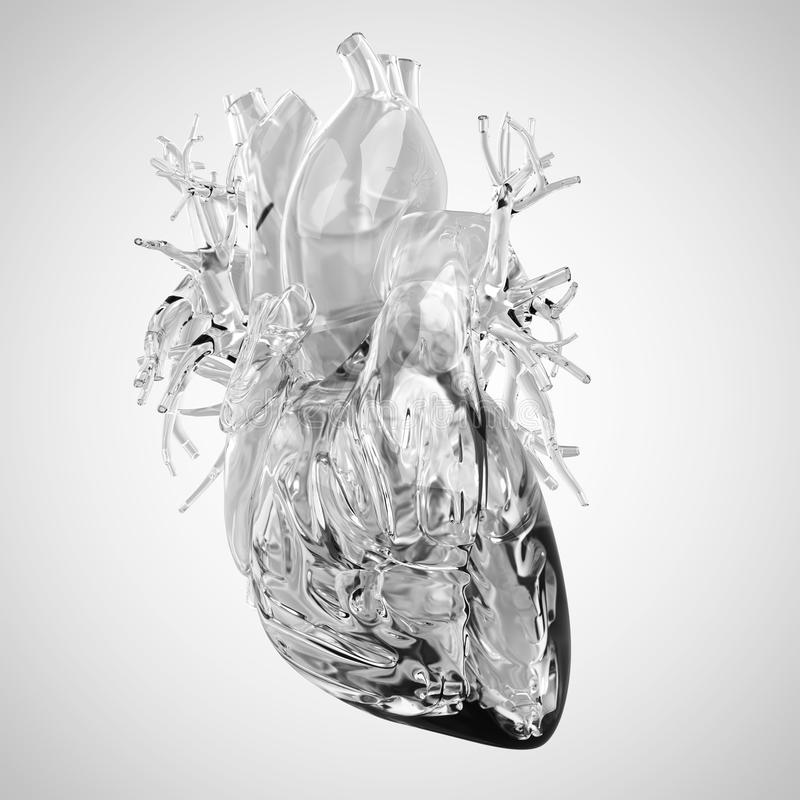 Human heart made of glass vector illustration