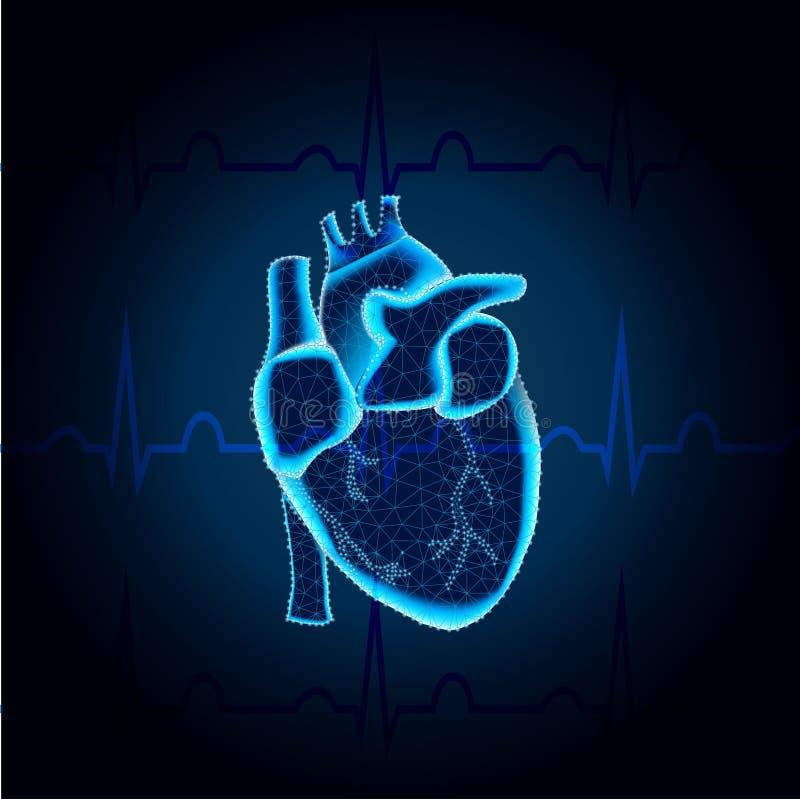 Human heart polygon on ECG blue mesh 3 vector illustration