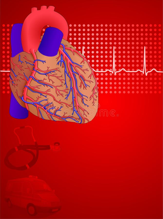 Human heart red background royalty free illustration
