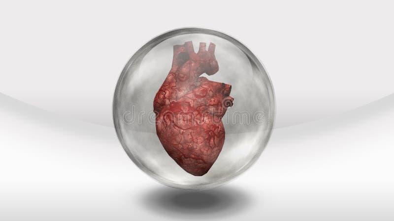 Human heart in sphere stock illustration