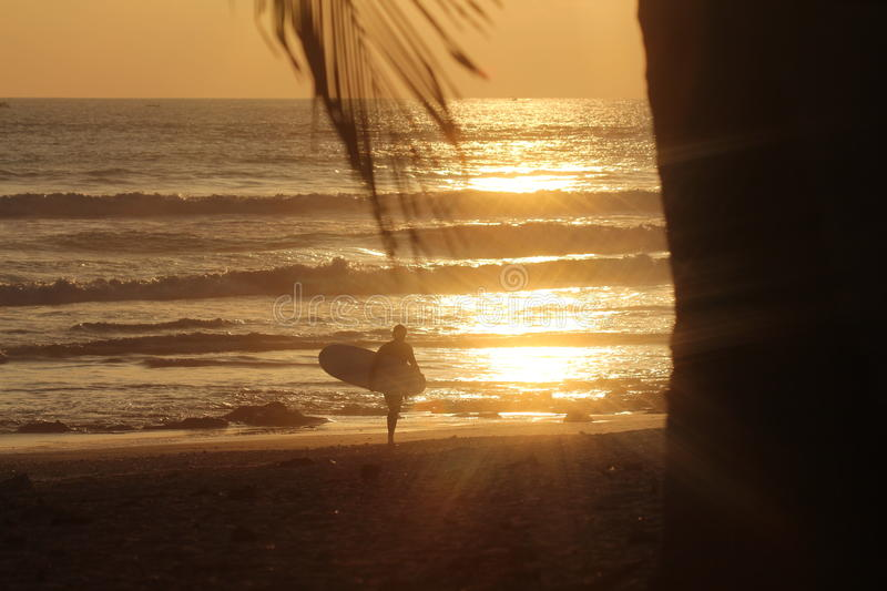 Human Holding Surfboard During Sunset Free Public Domain Cc0 Image