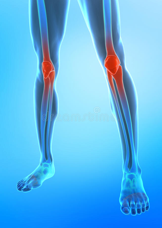 Free Human Knee Royalty Free Stock Photos - 11971748