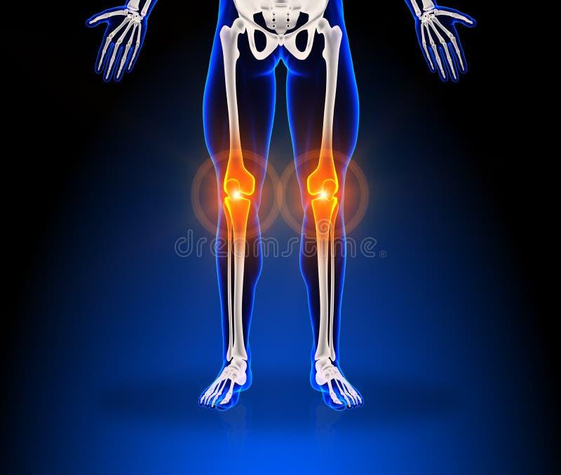 Download Human knee pain stock illustration. Illustration of illness - 30057898