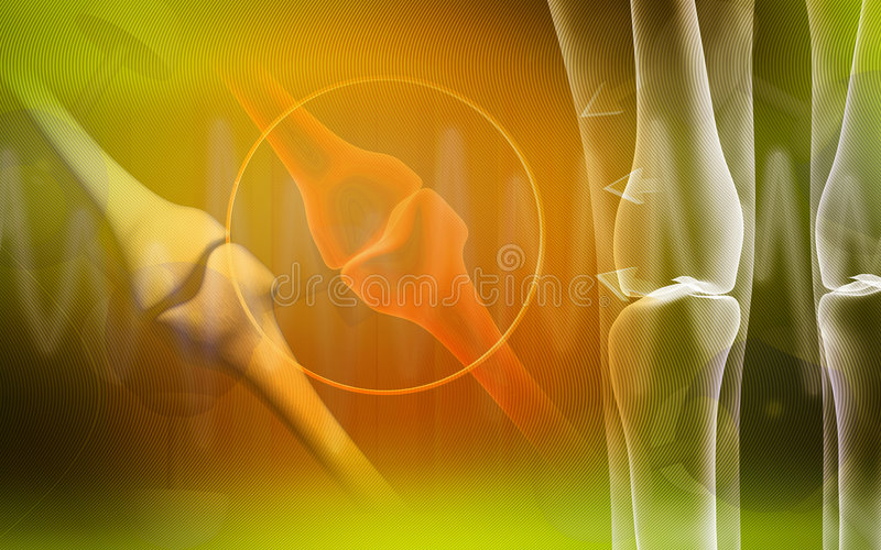 Human leg bone. Digital illustration of a human leg bone royalty free illustration