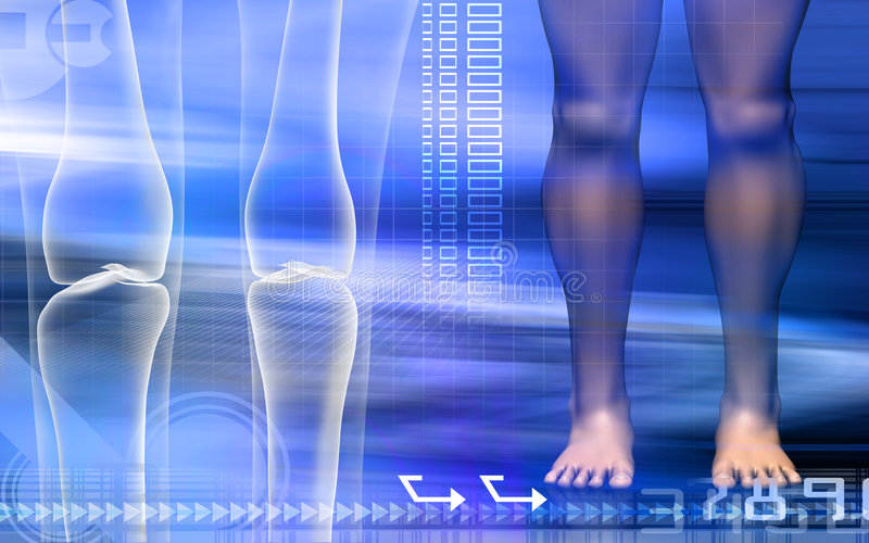 Human leg bone with leg. Digital illustration of a human leg bone with leg stock illustration