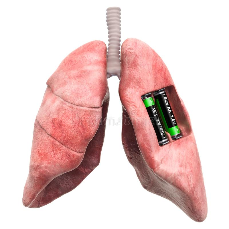 Human lungs with batteries. Recovery and treatment concept. 3D rendering. Isolated on white background vector illustration
