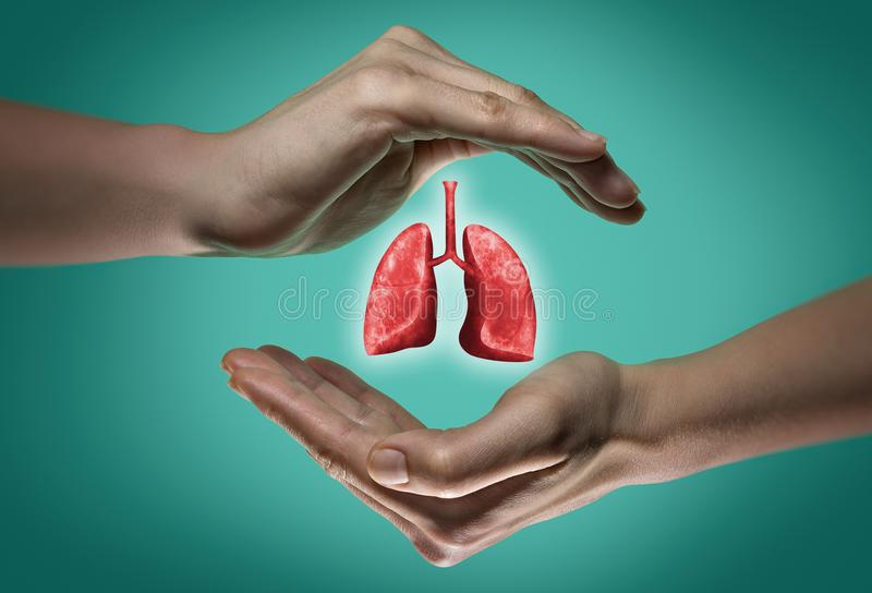 The concept of a healthy lungs. royalty free stock photo