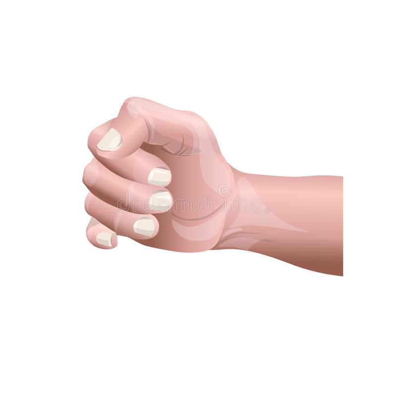 Human male hand. Closeup of a human male hand in a fist. Vector illustration isolated on white background royalty free illustration