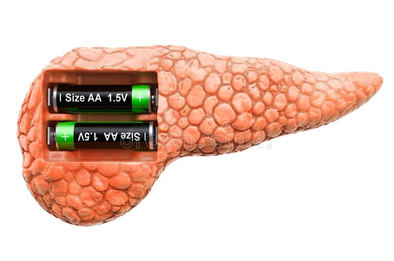 Human pancreas with batteries. Recovery and treatment concept. 3D rendering. Isolated on white background royalty free illustration