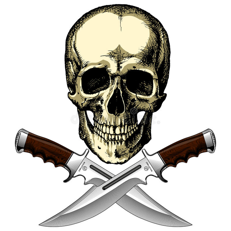 Human pirate skull with two knives vector illustration