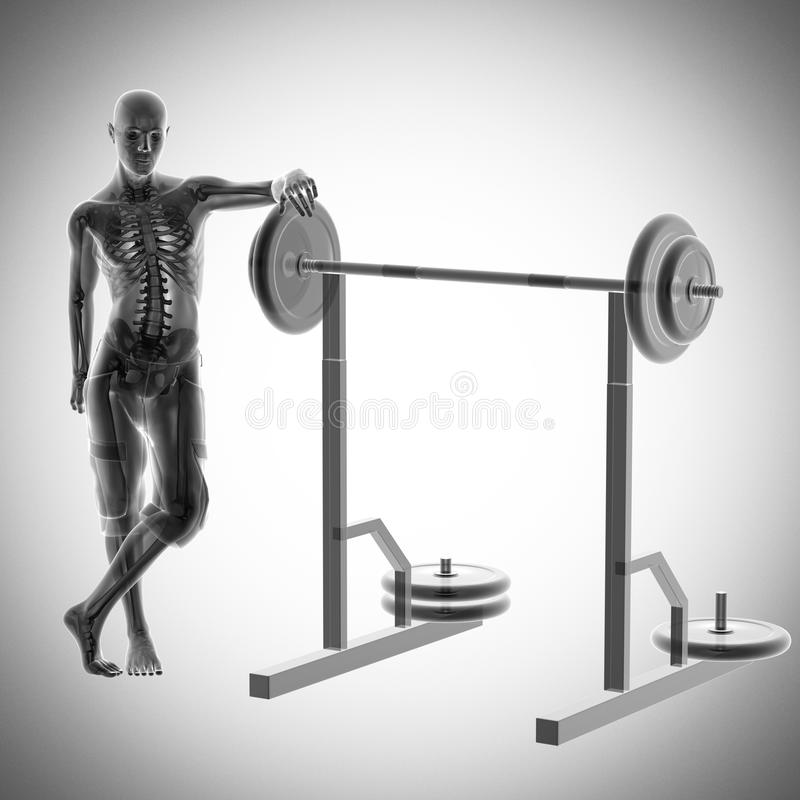 Human radiography in gym room stock photos