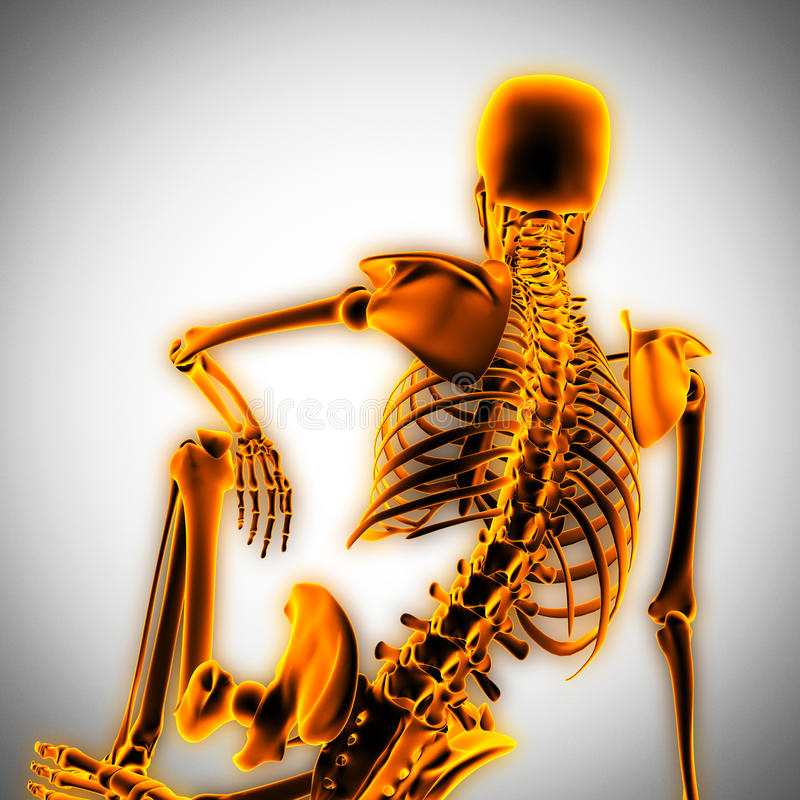 Human radiography scan with glowing bones royalty free stock photography