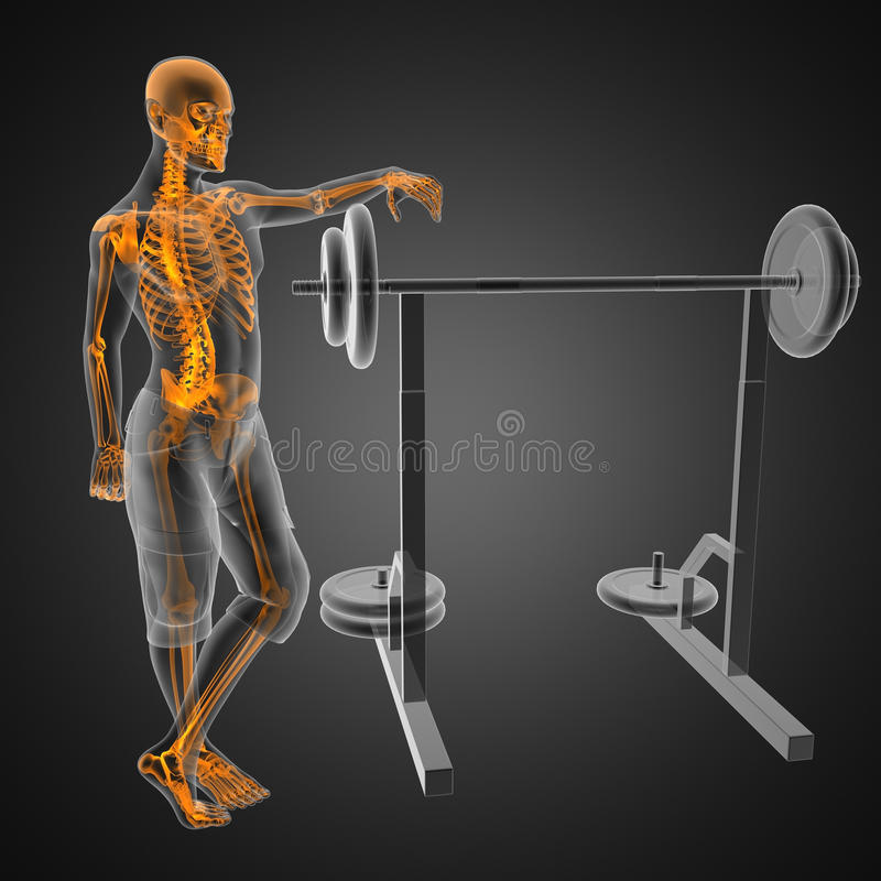 Human radiography scan in gym room vector illustration