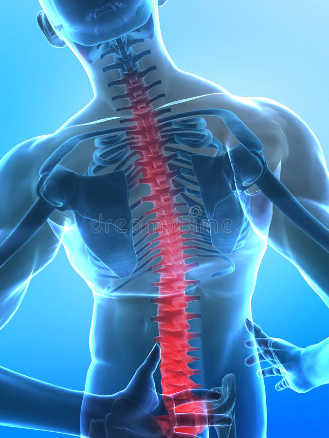 Human x-ray spine. Pain in backbone concept in blue stock illustration