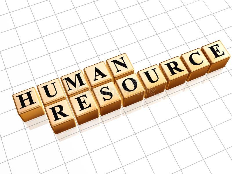 Download Human resource stock illustration. Image of leadership - 25663816